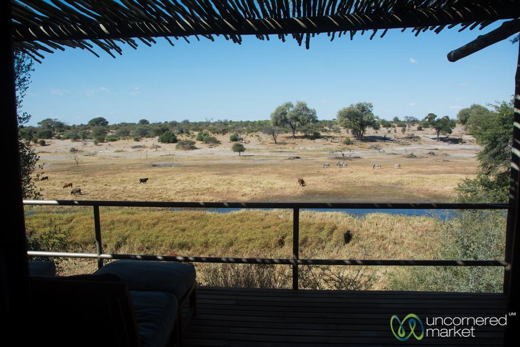 View from our Room's Verandah - Leroo La Tau, Botswana