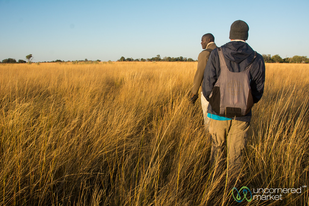 Walking Safari - Camp Okavango, Botswana
