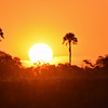 Sunset in Okavango Delta