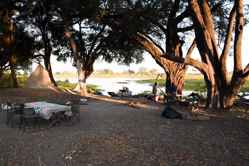 Camping with hippos, elephants, baboons and lions