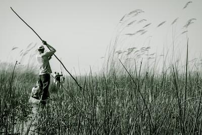 Life scene on  Okavango River.