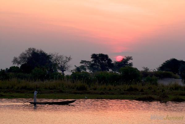 wildlife safari on the chobe river