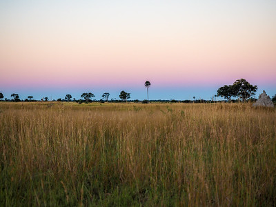 Sunset in the Okavango Delta in Botswana