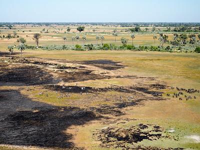 Okavango Delta from above