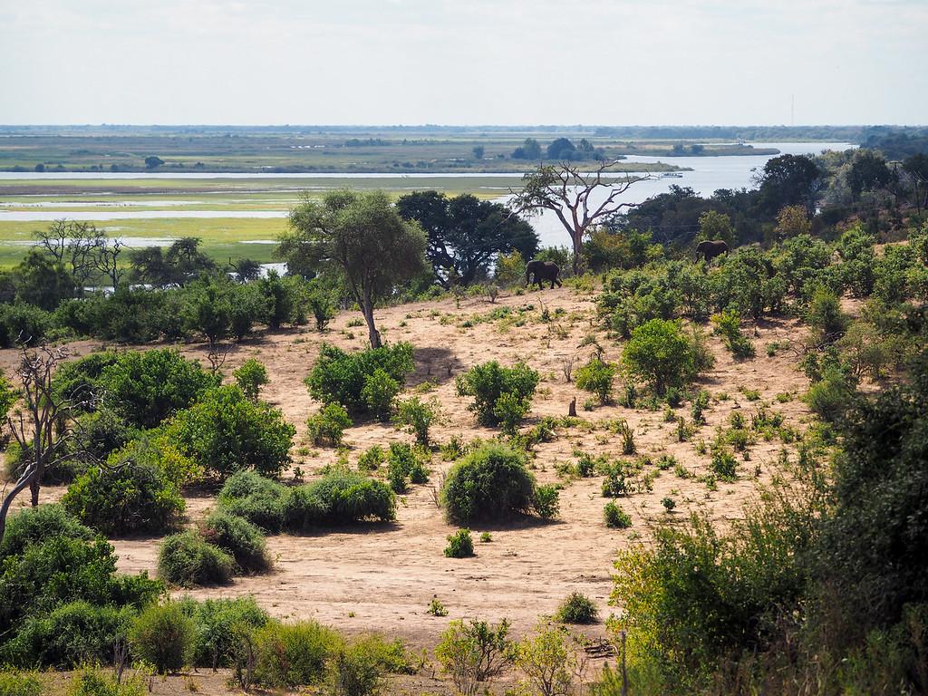 Chobe National Park landscape