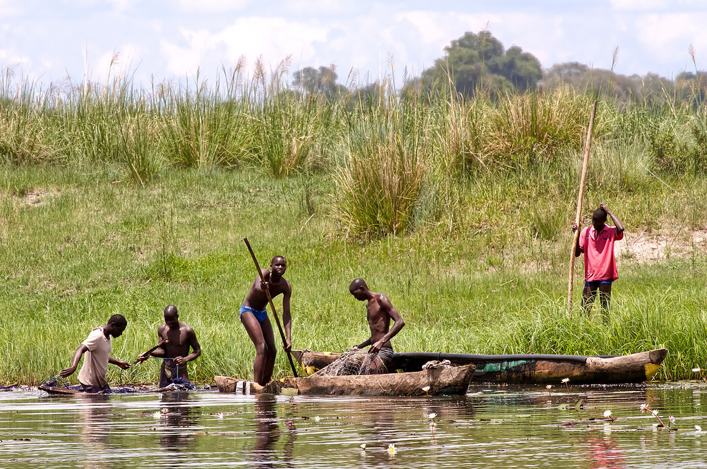 Fishermen in canoes tending their nets on the river bank in Botswana