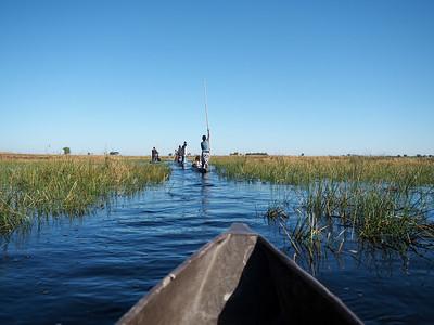 Mokoro ride in the Okavango Delta in Botswana