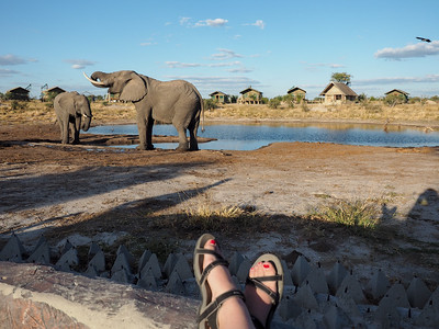 Elephant Sands in Botswana