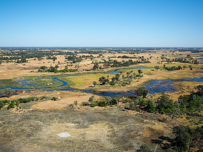 Okavango Delta from a helicopter
