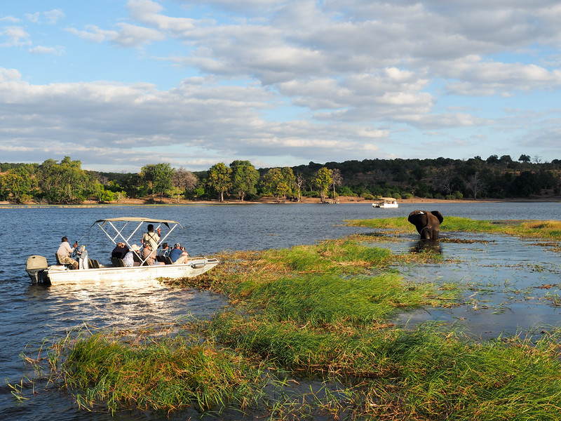 Boat safari in Chobe National Park in Botswana