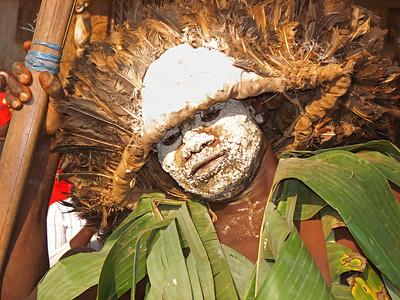 Cameroon, December 2012-January 2013