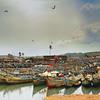 Elmina Shores Fishing Boats