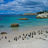 A gorgeous beach only for penguins