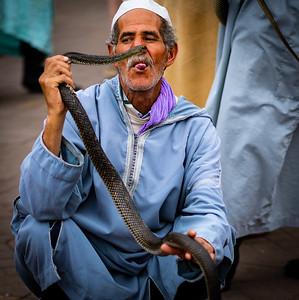 Snake Charmer, Marrakech Square