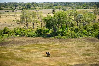Aerial Scenic & Elephant 2