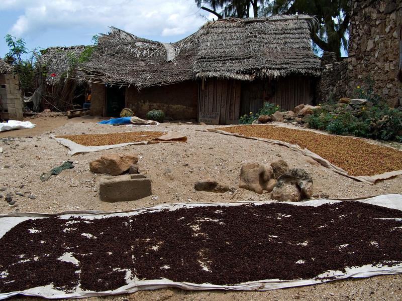 Spices drying, Nioumachoua, Moheli