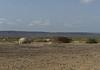 Afar homes east of Lac Abbe, Djibouti