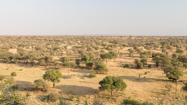 Tarangeri Landscape