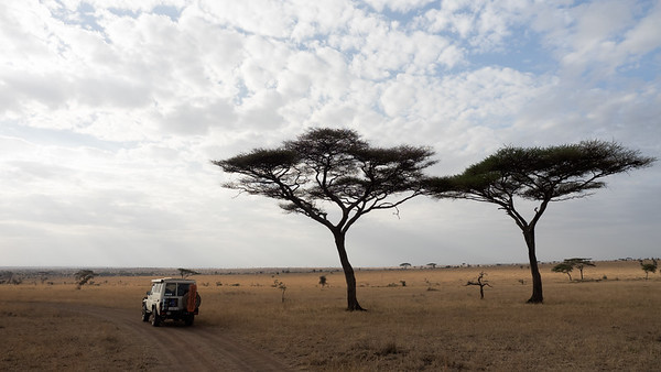 Exploring the Serengeti