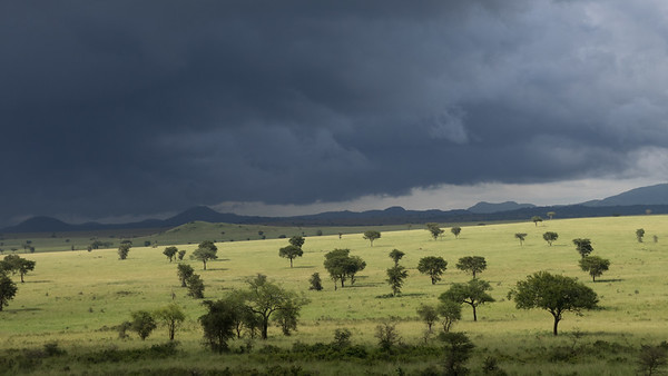 Kidepo National Park - Storm coming