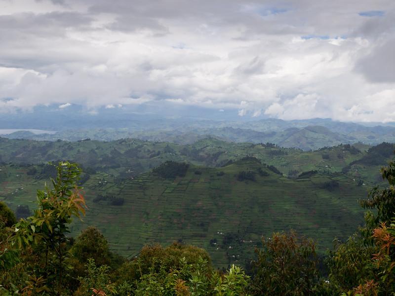Looking from Bwindi towards Lake Mutanda and volcanoes.
