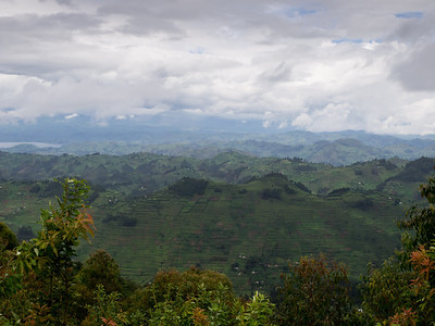 Looking from Bwindi towards Lake Mutanda and volcanoes.