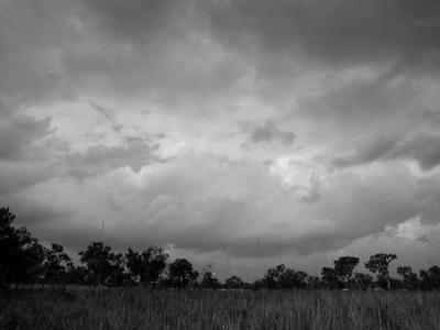 Ziwa landscape