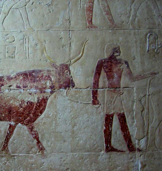Relief, Saqqara