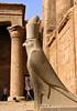 Horus statue, Temple of Horus, Edfu