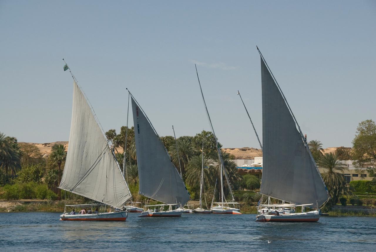Feluccas sailing the Nile River - Aswan, Egypt