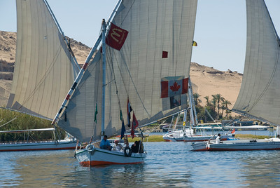 Feluccas sailing the Nile River in Aswan, Egypt