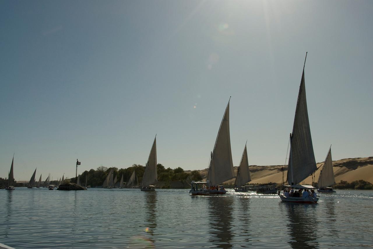 Feluccas cruising the Nile - Aswan, Egypt