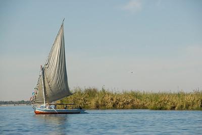 Felucca on Nile River along reeds - Aswan, Egypt