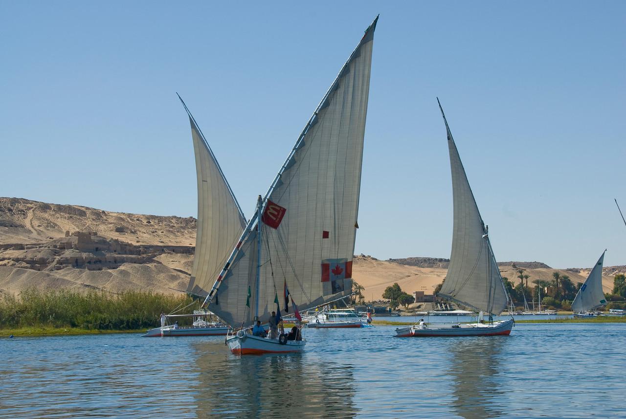 Feluccas sailing over the Nile River - Aswan, Egypt