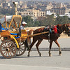 horse carriage at Giza Pyramids