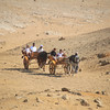 horse carts - Pyramids at Giza