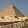 horses - Pyramids at Giza
