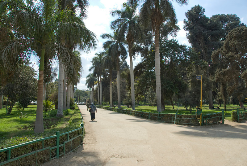 Beautiful park at Botanical Garden in Cairo, Egypt