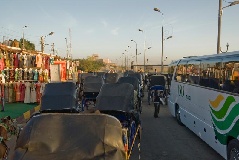 Carriages going to the Edfu Temple - Edfu, Egypt