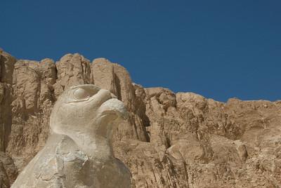 Falcon statue outside the Hatshepsuts Temple - Luxor, Egypt