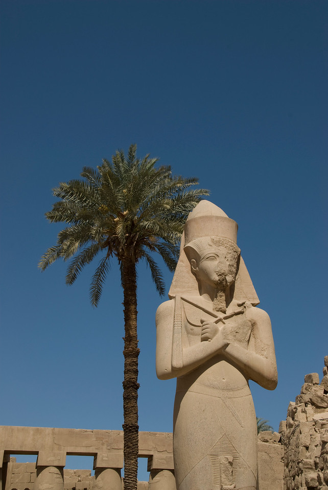 Pharaoh Statue and Palm Tree at the Karnak Temple - Luxor, Egypt