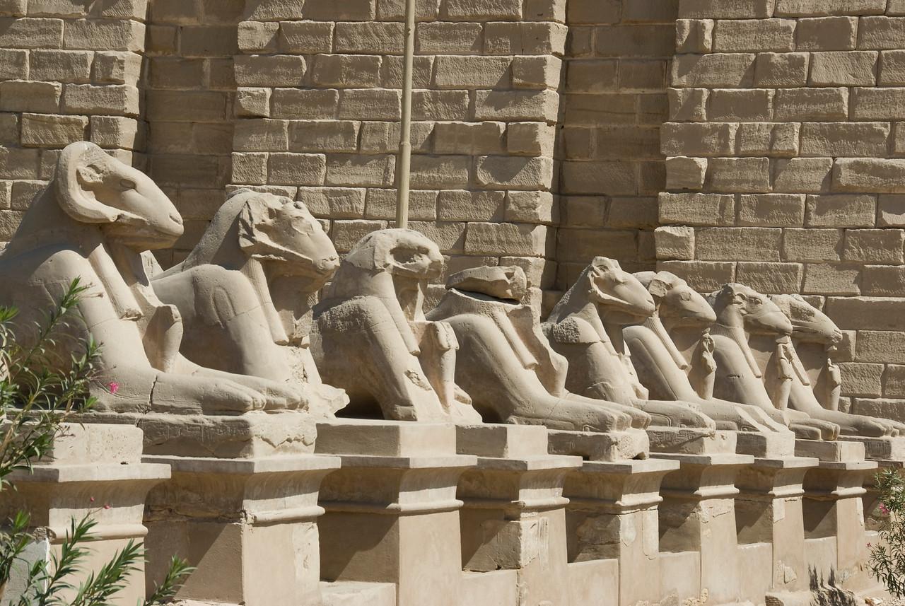 Row of Sphinxes outside the Karnak Temple - Luxor, Egypt