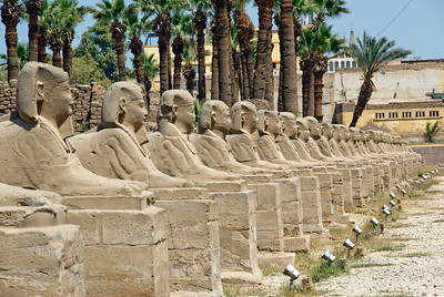 Row of Sphinxes at the Luxor Temple - Luxor, Egypt