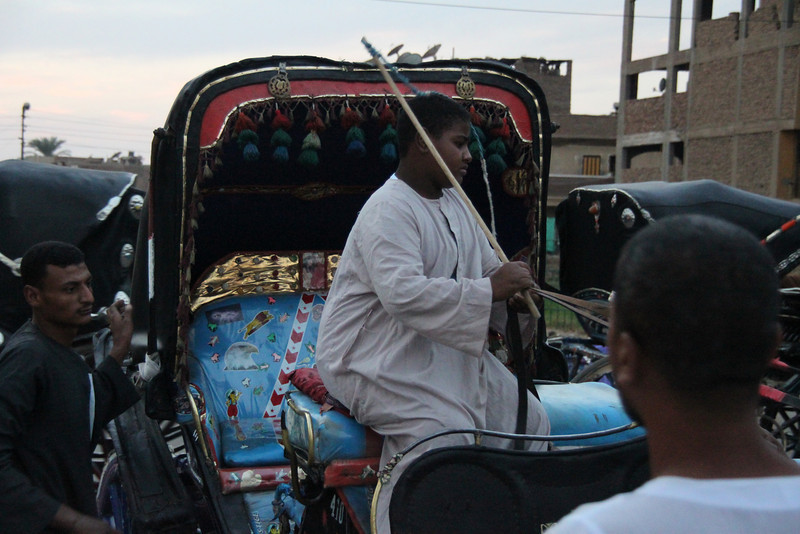 carriage ride to Edfu temple