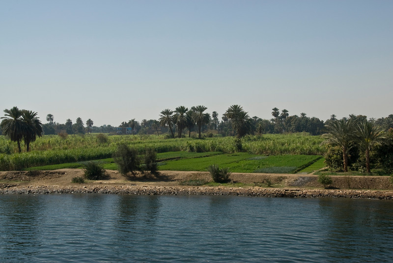 Farm Fields along the bank of the Nile River - Nile, Egypt