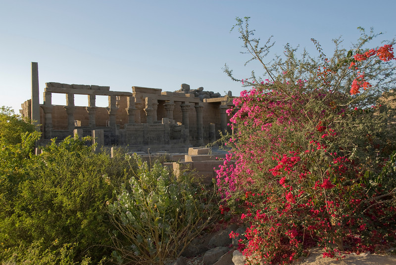Flowers and Temple - Philae Temple, Aswan, Egypt