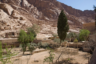 Monestary Garden 2 - St. Catherine's, Egypt