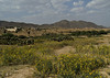 Outskirts of Keren