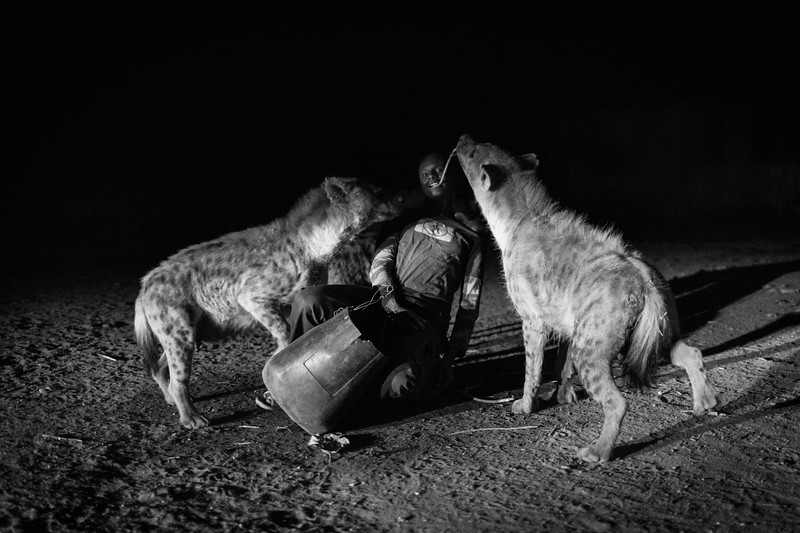 The Hyena Man, Harar