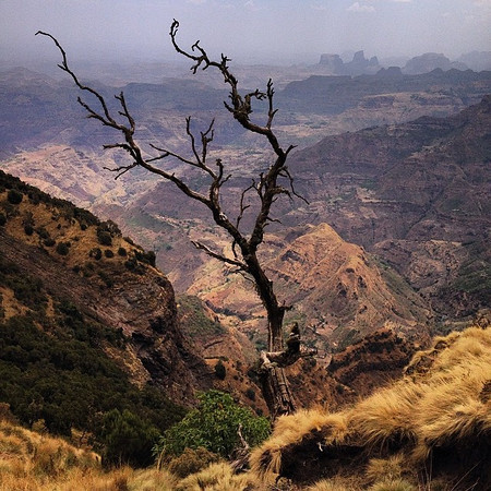 The Simien Mountains, Ethiopia. Referred to as The Roof of Africa. Where we've disappeared to for the last couple of days. Layers of mountains and canyons with textures of vegetation, animals and birds. Ethiopia = keep your eyes open. via Instagram http://ift.tt/1fzoyWi